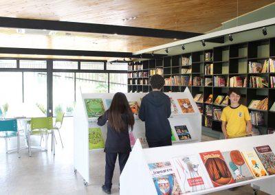biblioteca carampangue 11