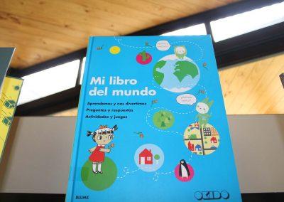 biblioteca carampangue 27