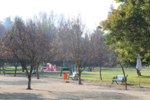 jardin-gl2